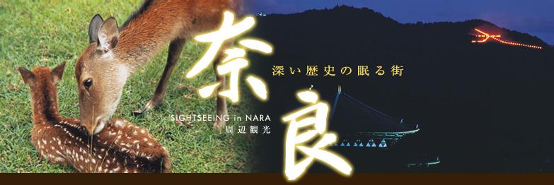 深い歴史の眠る街 奈良 周辺観光